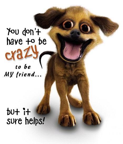 Crazy friends?